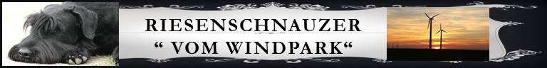 Banner_vom_Windpark